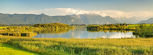 View over Riegsee Lake to Zugspitze and Wettersteingebirge Mountains, Upper Bavaria, Bavaria, Germany, Europe