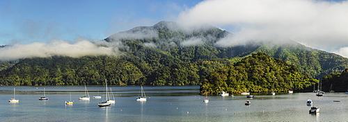 Sailing boats at Ngakuta Bay, Marlborough Sounds, Picton, South Island, New Zealand, Pacific