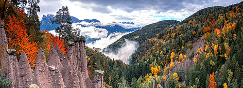 Mist over the earth pyramids and forest in autumn, Longomoso, Renon/Ritten, Bolzano, South Tyrol, Italy