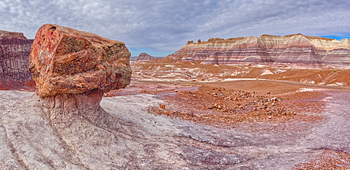 A large petrified log along the Blue Mesa Trail in Petrified Forest National Park, Arizona, United States of America, North America