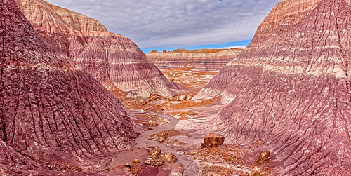 View from a side canyon along the Blue Mesa Trail in Petrified Forest National Park, Arizona, United States of America, North America