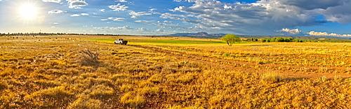Pickup truck on Fire Road 182 exploring prairie grassland near Drake in the Prescott National Forest, Arizona, United States of America, North America