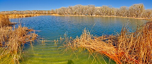 Middle Lagoon, one of three Lagoons at Dead Horse Ranch State Park, Arizona, United States of America, North America