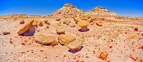 A stone garden of Toadstool rocks on the south end of Keyhole Mesa in Petrified Forest National Park, Arizona, United States of America, North America