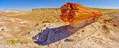 A giant petrified log on a sandstone pedestal on the edge of the Blue Mesa in Petrified Forest National Park Arizona.