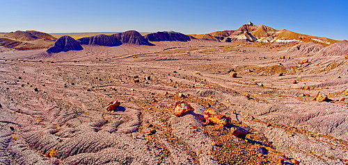 A long formation of purple Bentonite clay in Petrified Forest National Park Arizona called the Purple Peninsula.