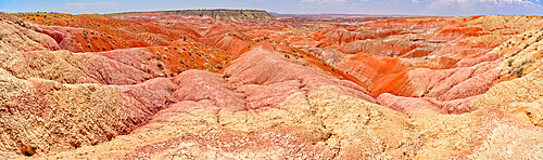 Blood red ridges of Bentonite clay on the east side of Tiponi Point in Petrified Forest National Park Arizona.