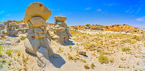 Field of hoodoos in Goblin Garden in the Flat Tops of Petrified Forest National Park Arizona.