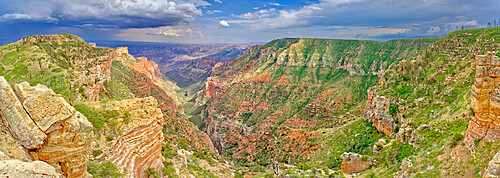 View from the Saddle Mountain Overlook on the northeast edge of Grand Canyon North Rim and the Kaibab National Forest, Arizona, United States of America, North America