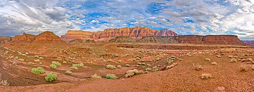 Vermilion Cliffs National Monument where it overlaps Glen Canyon Recreation Area Arizona.