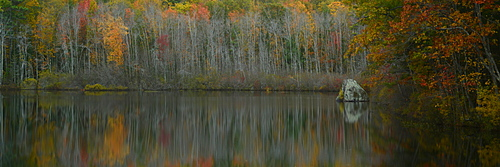 Fall foliage reflected in lake, Maine, New England, United States of America, North America
