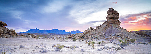 Desert sunset panorama with Chisos Mountains in the background, Big Bend National Park, Texas, United States of America, North America