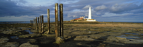 St. Mary's Lighthouse and St. Mary's Island in evening light, near Whitley Bay, Tyne and Wear, England, United Kingdom, Europe