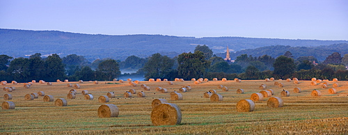 Early morning light and mist on a field of straw bales Brockham, Surrey, England, United Kingdom, Europe