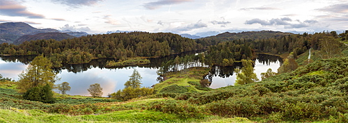 Tarn Hows near Hawkshead, Lake District National Park, UNESCO World Heritage Site, Cumbria, England, United Kingdom, Europe