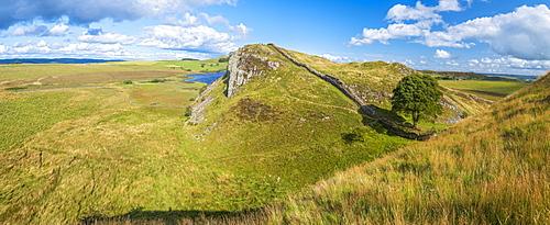 Sycamore Gap, Hadrian's Wall, UNESCO World Heritage Site, Henshaw, Hexham, Northumberland, England, United Kingdom, Europe