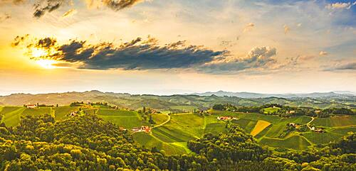 Aerial view, Panorama of Vineyards in the evening light, South Styria, Austria, Europe