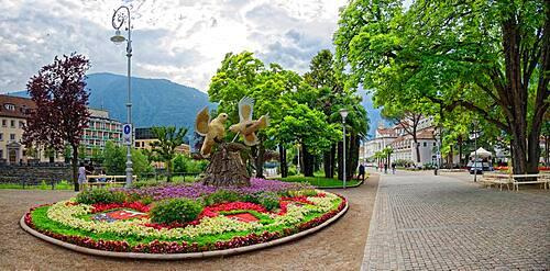 Natural Monument Horse Chestnut, Passer Promenade, Merano, Trentino-Alto Adige, Italy, Europe