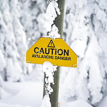 Yellow caution sign warning of avalanche danger, Thompson-Nicola P, British Columbia, Canada