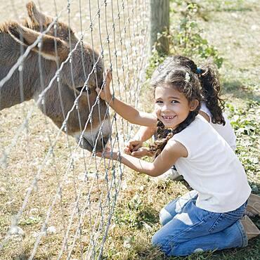 Hispanic sisters petting donkey