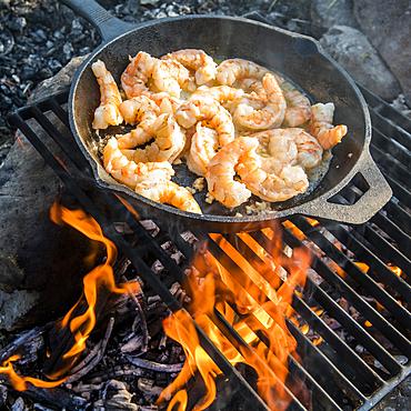 Shrimp frying in skillet over campfire
