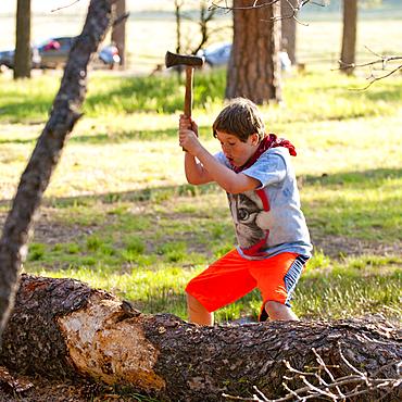 Caucasian boy chopping log with axe