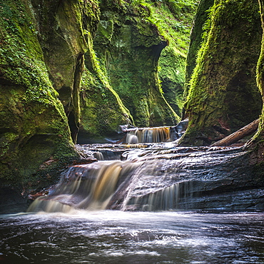 The gorge at Finnich Glen (Devils Pulpit) near Killearn, Stirlingshire, Scotland, United Kingdom, Europe - 1287-76