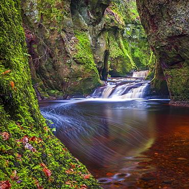 The gorge at Finnich Glen (Devils Pulpit) near Killearn, Stirlingshire, Scotland, United Kingdom, Europe - 1287-79