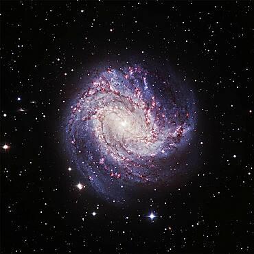 Southern Pinwheel Galaxy M83, Optical