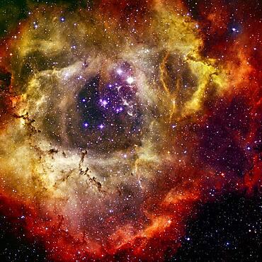 Blooming Rosette Nebula