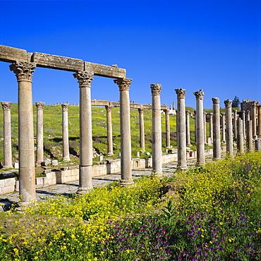 Cardo (main street) of the Roman Decapolis city, 1st century AD, Jerash, Jordan, Middle East