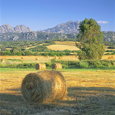 Straw bales in fields, Sardinia, Italy, Europe