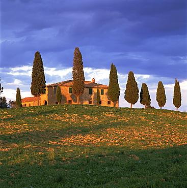 Farmhouse and trees near Pienza, Siena Province, Tuscany, Italy, Europe