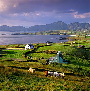 View over Allihies and Ballydonegan Bay, Beara Peninsula, County Cork, Munster, Republic of  Ireland, Europe