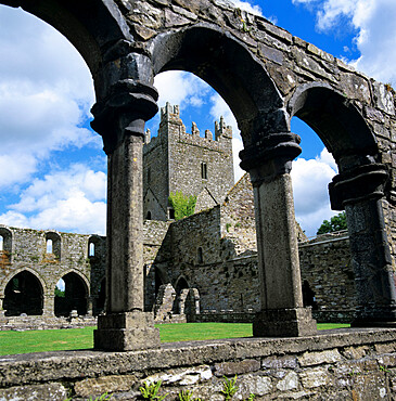 Ruins of Cistercian Jerpoint Abbey, Jerpoint, County Kilkenny, Leinster, Republic of Ireland, Europe