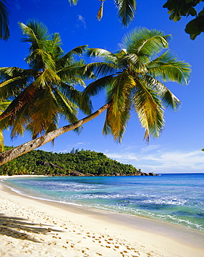 Beach, Anse Takamaka, Mahe Island, Seychelles
