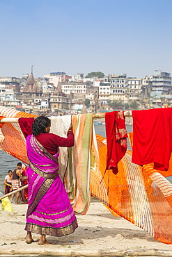 Hanging up washing on banks of Ganges River, Varanasi, Uttar Pradesh, India, Asia