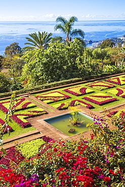 Botanical Gardens, Monte, Funchal, Madeira, Portugal, Atlantic, Europe