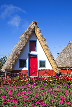 Traditional houses with steep, triangular-shaped thatched roofs, Santana, Madeira, Portugal, Atlantic, Europe