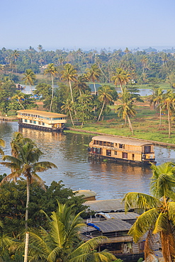 Houseboats on Backwaters, Alappuzha (Alleppey), Kerala, India, Asia