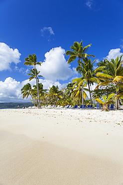 Cayo Levantado, Samana, Eastern Peninsula de Samana, Dominican Republic, West Indies, Caribbean, Central America