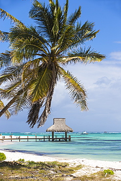 Wooden pier with thatched hut, Playa Blanca, Punta Cana, Dominican Republic, West Indies, Caribbean, Central America