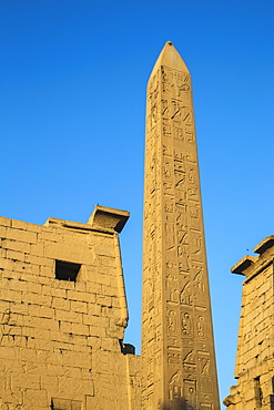 Oblelisk at temple entrance, Luxor Temple, UNESCO World Heritage Site, Luxor, Egypt, North Africa, Africa