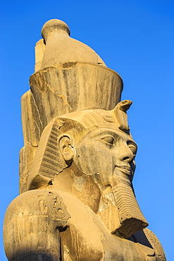 Colossi of Ramesses II in The First Court, Luxor Temple, UNESCO World Heritage Site, Luxor, Egypt, North Africa, Africa