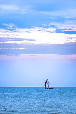 Negombo, traditional outrigger fishing boat (oruva) returning at sunrise to Negombo fishing market, Sri Lanka, Asia