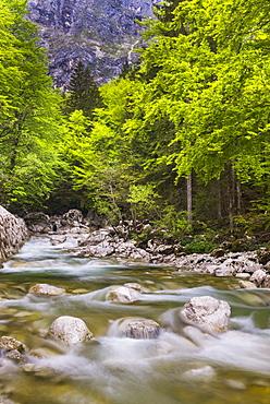 Bohinj River in the Bohinj Basin, Triglav National Park, Julian Alps, Slovenia, Europe