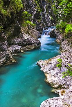 Tolminka River, Tolmin Gorges, Triglav National Park (Triglavski Narodni Park), Slovenia, Europe