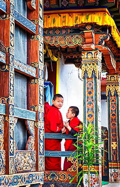 Novice Buddhist monks, Chimi Lhakhang Monastery, also known as the Fertility Temple, Punakha District, Bhutan, Asia