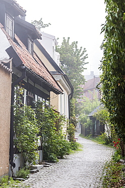 View of houses in the town of Visby, UNESCO World Heritage Site, Gotland Island, Sweden, Scandinavia, Europe