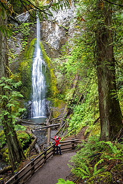 Waterfall on the Marymere Falls Trail, Quinault Rain Forest, Olympic National Park, UNESCO World Heritage Site, Washington State, United States of America, North America